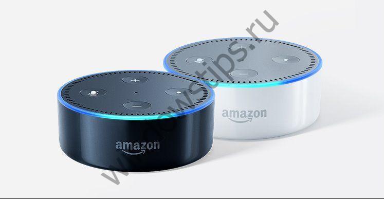 Бывший инженер Microsoft нашел ошибку, позволившую Amazon Alexa завоевать рынок