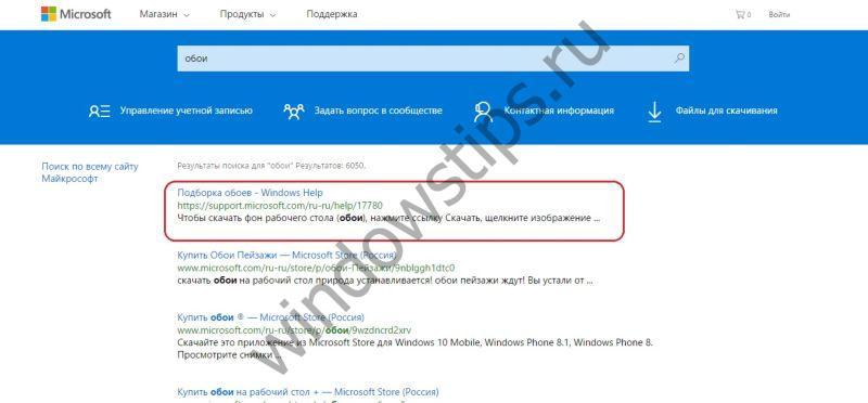 Стандартные обои для Windows 10 : ищем и скачиваем