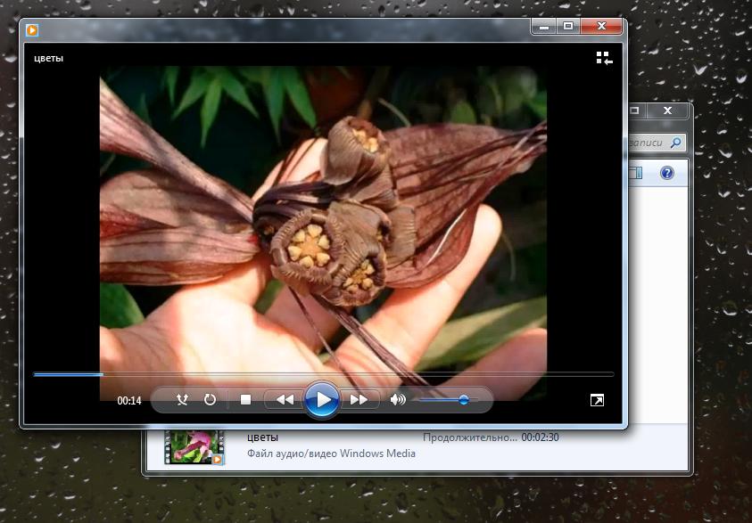 Как вырезать видеофрагмент из видео