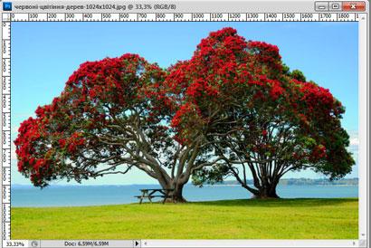 Как вырезать изображение в Фотошопе