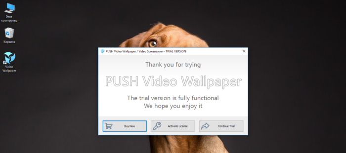 Как установить живые обои на рабочий стол для Windows 10
